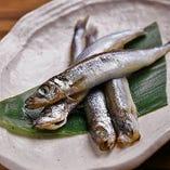 新鮮なお魚もお焼きします