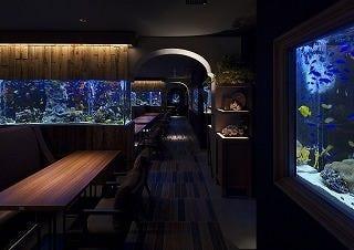 アクアリウム&魚イタリアン ライム心斎橋