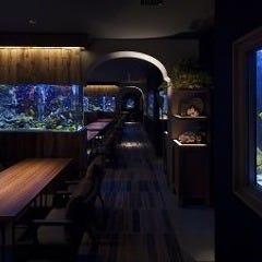 アクアリウム&魚イタリアン ライム心齋橋