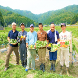 契約農家の市島農園から、美味しいお野菜届けて頂いてます!!