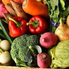 自社菜園で採れた新鮮な野菜