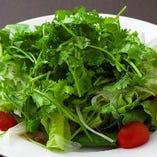 パクチーたっぷりグリーンサラダ