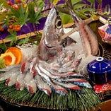 長崎  鯖活き造り