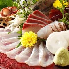 朝獲れ鮮魚のお造り