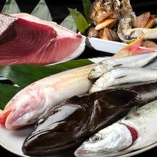[店主の目利き]毎日仕入の新鮮魚介