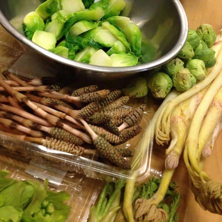 旬の食材を使った季節感のあるお料理