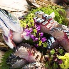 【九州料理】産地直送の鮮魚