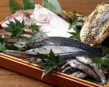 塩釜港で水揚げされた新鮮魚介を堪能