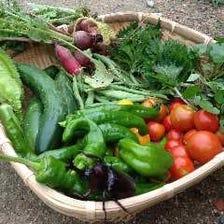自家農園で育てた野菜