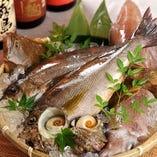 市場直送の新鮮な鮮魚【宮城県】