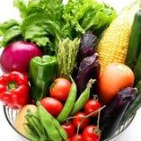 農家直送の瑞々しいお野菜たち【宮城県】