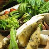 旬の桜鯛・京野菜・湯葉・なまふもご用意しております。