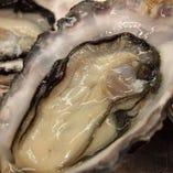 年中楽しめる厚岸直送の牡蠣【厚岸】