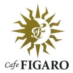 イタリアンスパニッシュ cafe FIGARO(カフェ フィガロ)