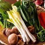 瑞々しい新鮮野菜【国内】