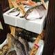 鮮度抜群の鮮魚を続々入荷中!