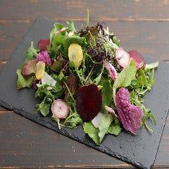 地元野菜のオーガニックサラダ『サラダマルシェ』