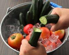 野菜にだってこだわる!