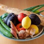 新鮮な野菜も多数入荷中です