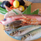 全国各地の漁港から新鮮魚介が届きます