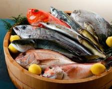 産地直送の鮮魚を使った魚料理