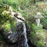 自然豊かなで癒される景色をご堪能ください。