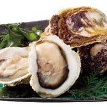 季節の生牡蠣(時価)季節により産地を厳選してお届けいたします。