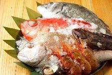 産地から直送される旬の鮮魚が自慢!!