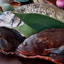 大阪産(もん)の地魚を堺漁港から仕入