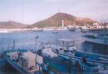 ふぐ延縄漁発祥の地 すくも島漁港