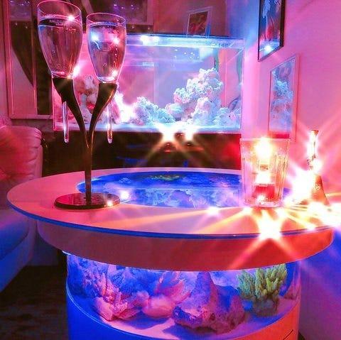 【横浜・女子会限定】煌めく個室水族館で豪華ディナーコース付リムジンパーティープラン