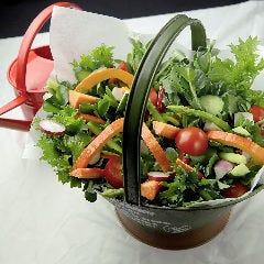 近江野菜の植木鉢サラダ 花様ドレッシング