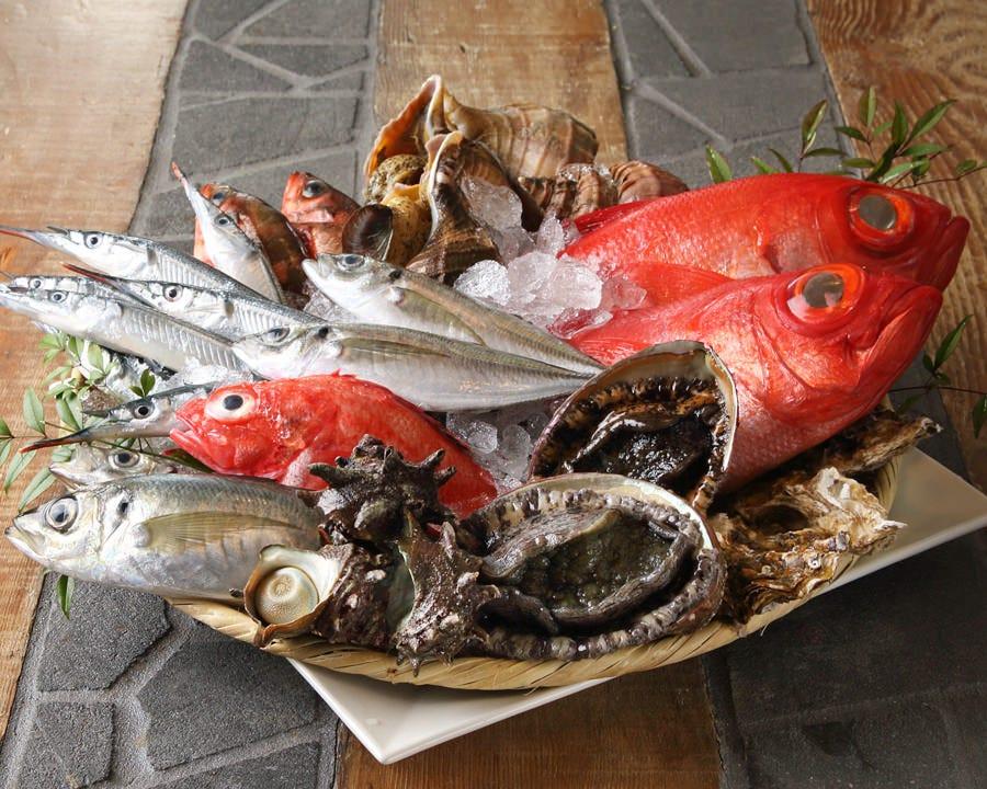 丁寧な料理に新鮮な漁師料理! 海の幸溢れるコース4,000円~