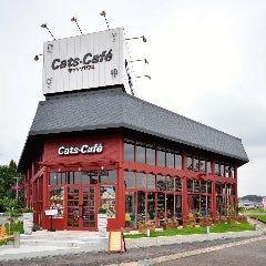 キャッツカフェ多治見店
