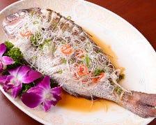 【豪華】鮮魚の広東風蒸し、プリプリ車エビと広東ダックがメインの「5000円コース」全9品