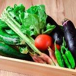 福岡の季節野菜