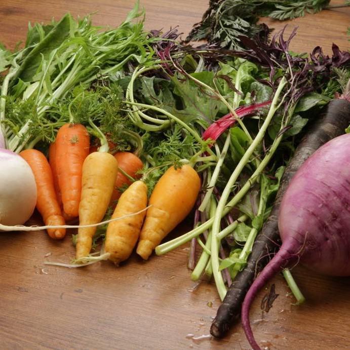 産地直送!色鮮やかな新鮮鎌倉野菜♪