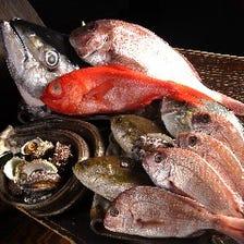 超新鮮!抜群の魚原価無視の魚盛り!