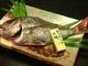 玄海産 天然真鯛