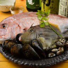 瀬戸内産の獲れたての地魚も使用!