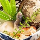旬のほっき貝をお刺身で◎活けの生を刺身にしたものは食感