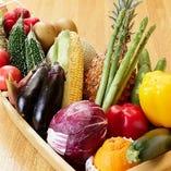 大阪近郊の旬菜をご提供!野菜にもこだわり!【大阪府】
