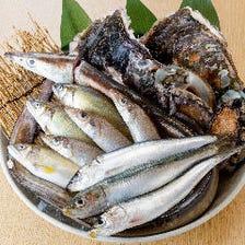 生簀の天然鮮魚をお造りや天ぷらへ♪