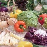 三浦半島、遠州地方の野菜【三浦半島】