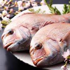 旬魚(四季折々の旬魚をお愉しみください)