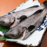 ◇産地直送◇ 長崎県五島列島から直送の海鮮を使用しております