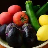 旬のお野菜を使ったサラダや一品料理など、季節感あふれる一皿をご堪能ください!