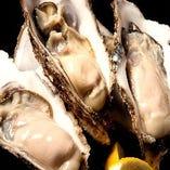 産直新鮮ぷりぷり生牡蠣