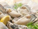 毎日仕入れる旬の生牡蠣。
