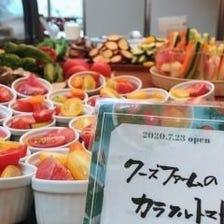 新鮮な野菜を楽しむランチサラダビュッフェ付き選べるメインメニュー